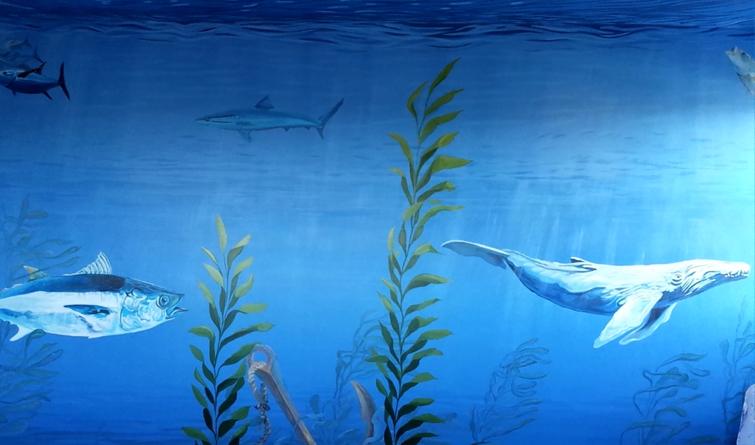 31.Uderwater mural detail